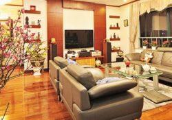 Những thông tin hay hướng dẫn mua ghế sofa giường thông minh trong dịp tết Mậu Tuất