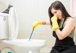 Mẹo tẩy rửa nhà vệ sinh và vệ sinh bồn cầu sạch sẽ 100%